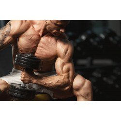 Sustanon is the recommended steroid for men after 40