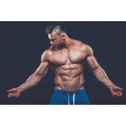 Trenbolone is a powerful anabolic steroid
